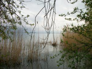 europa_2010-456